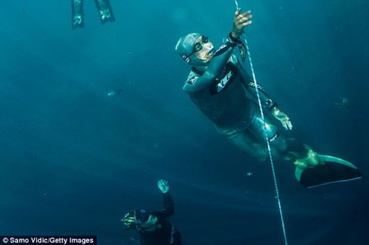 Record Breaking Daring FreediverS