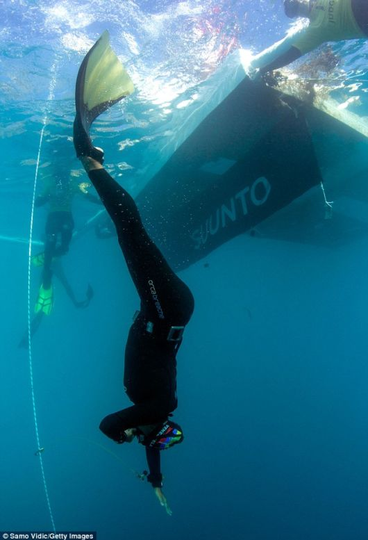 Record Breaking Daring FreediverS