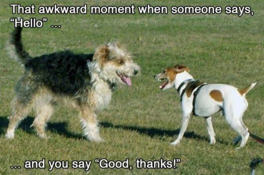 Some Funny Awkward Situations