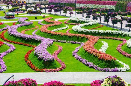 The Miracle Garden In Dubai