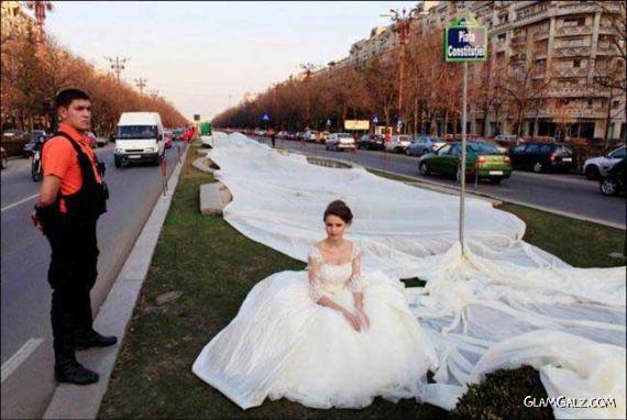 World's Longest Wedding Gown